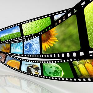 Как скачивать видео из интернета. Обзор популярных программ и онлайн сервисов