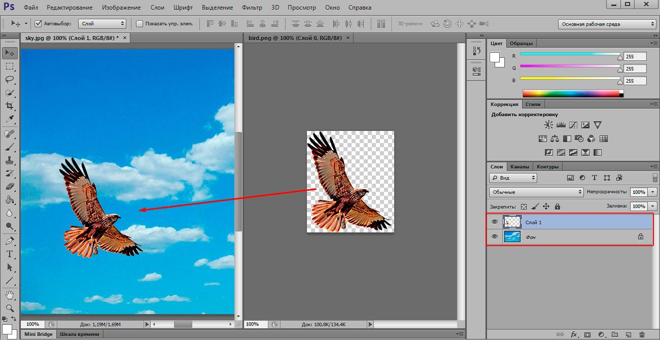 sky_bird_copy